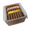 HOYO DE MONTERREY DOUBLE CORONAS BOX  50